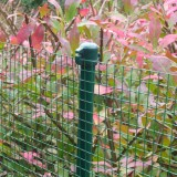 Betafence Multistick 18mm 75cm groen RAL 6005 (25x)