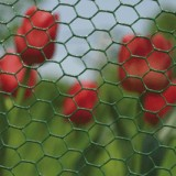 Hexanet Plastic 50cm 10m (13x1.00mm) groen BF 6073