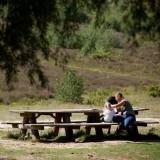 Boomstam picknicktafel Kastanje + Eiken 400cm