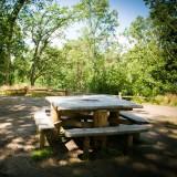 Boomstam picknicktafel Kastanje + Eiken familie-rondom